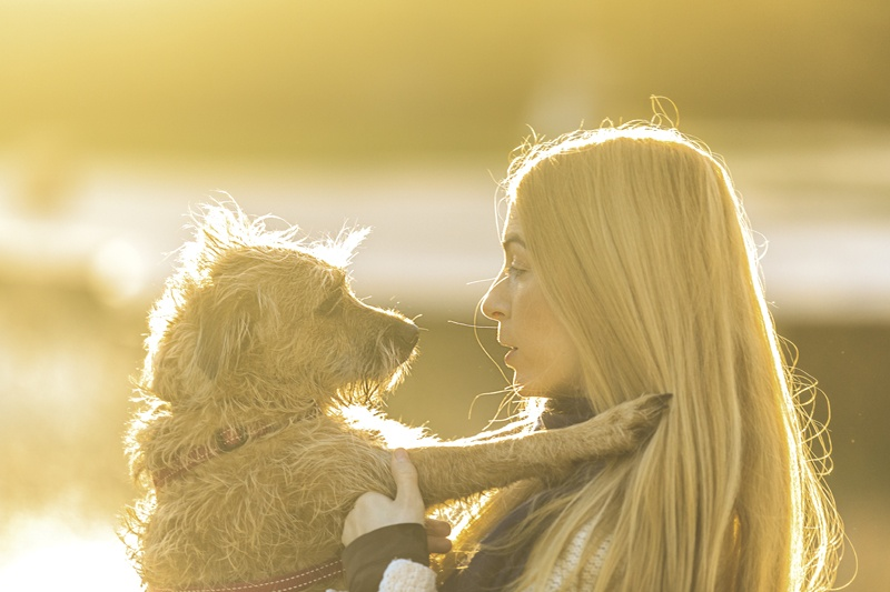 Fotografía con mascotas en Valencia